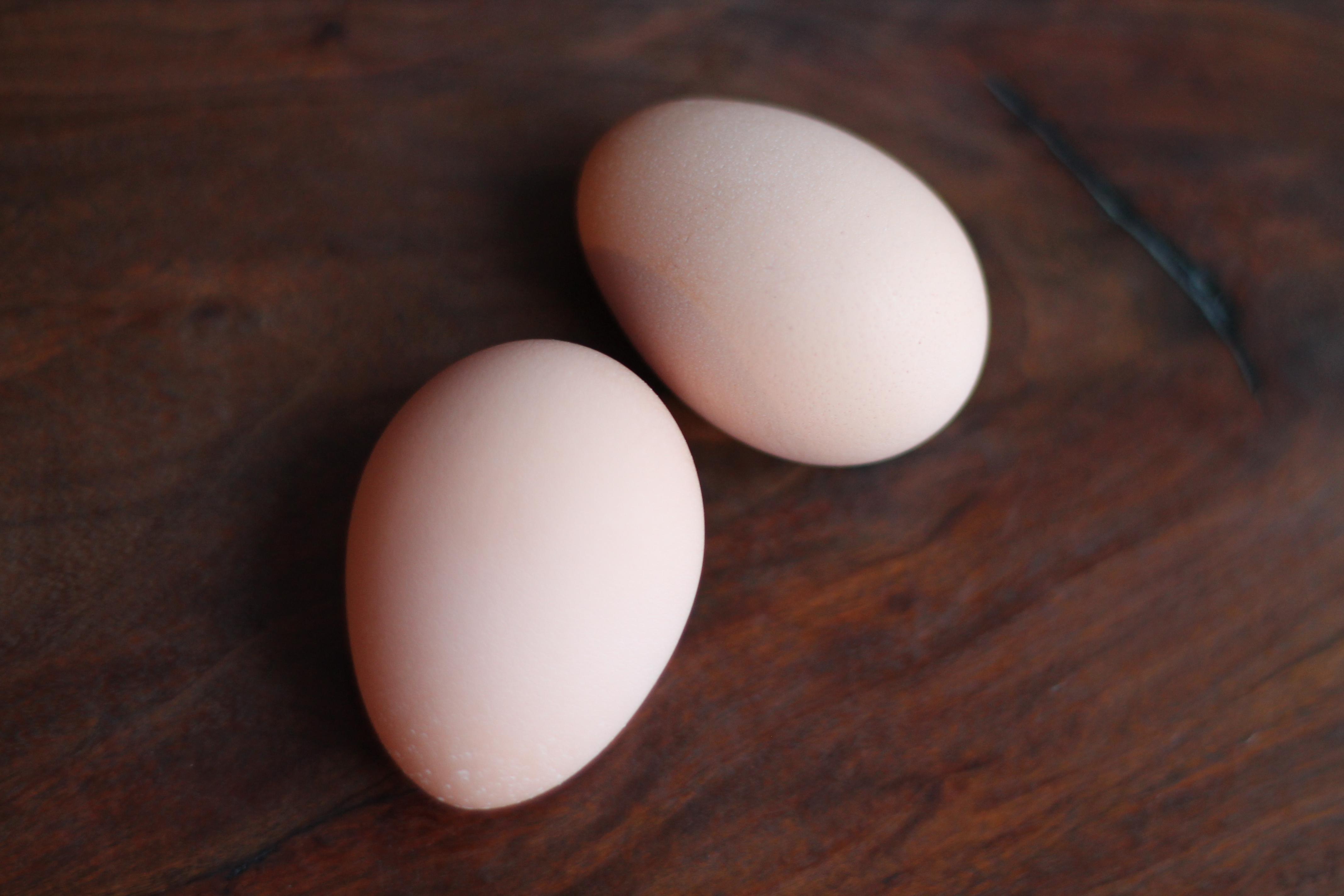 Вместе с яйцами #15