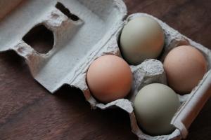 Small egg cartons