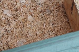 Empty nesting box