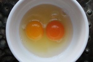 Egg yolk comparison